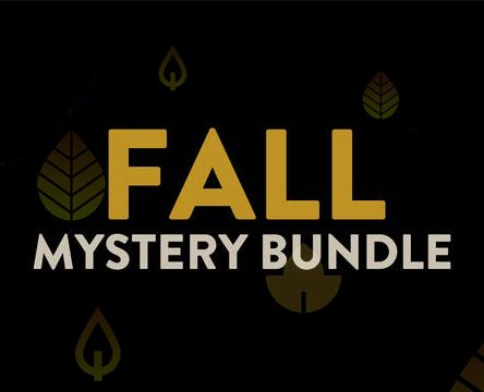 Fanatical Fall Mystery Bundle. Wylosuj do 10 gier na Steam
